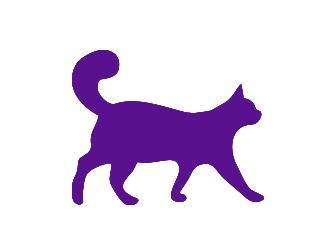 cat-sillouette